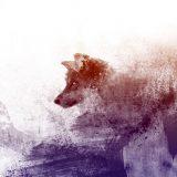 Guck zweimal hin, hör auf's Gefühl, ein Wolf mit Herz hat sehr viel Stil.
